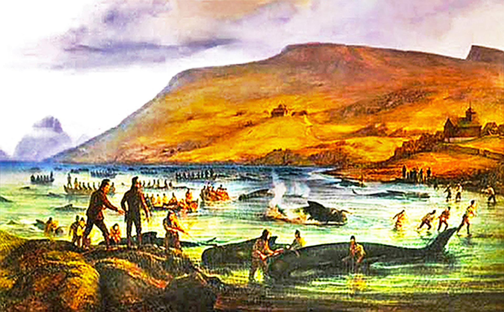 "Pilot whale hunt dates back to the beginning of the Norse settlement of the Faroes c. 1200 years ago. Screenshot from the book ""Pilot Whaling in the Faroe Islands"" by Jóan Pauli Joensen."