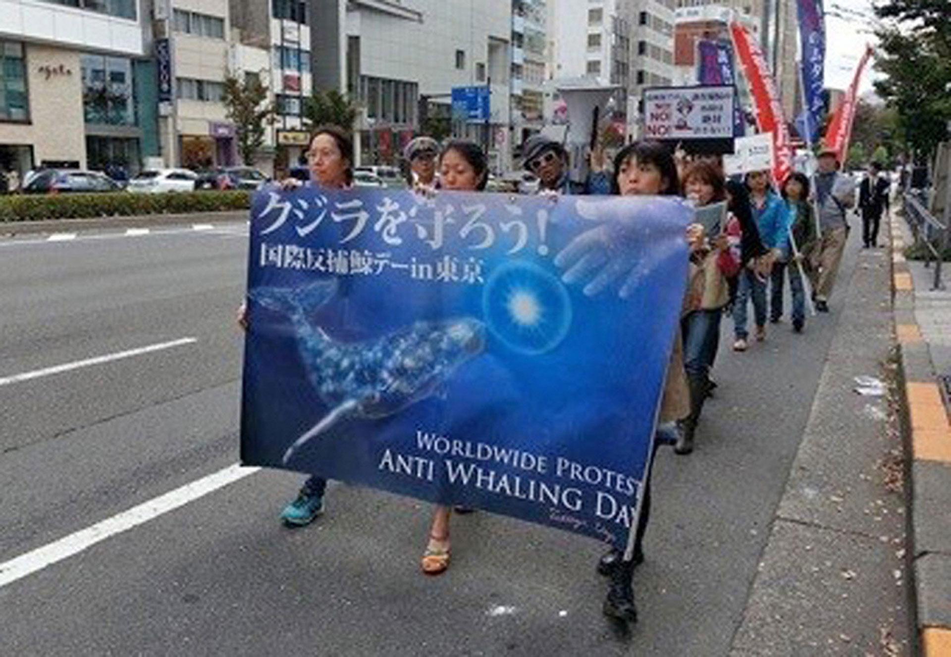 反捕鯨デモ、東京、2014年|写真提供者:海洋哺乳類を守る会
