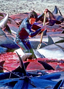 Red blooded sea where trapped dolphins are hacked to death. Iki Island, Japan.
