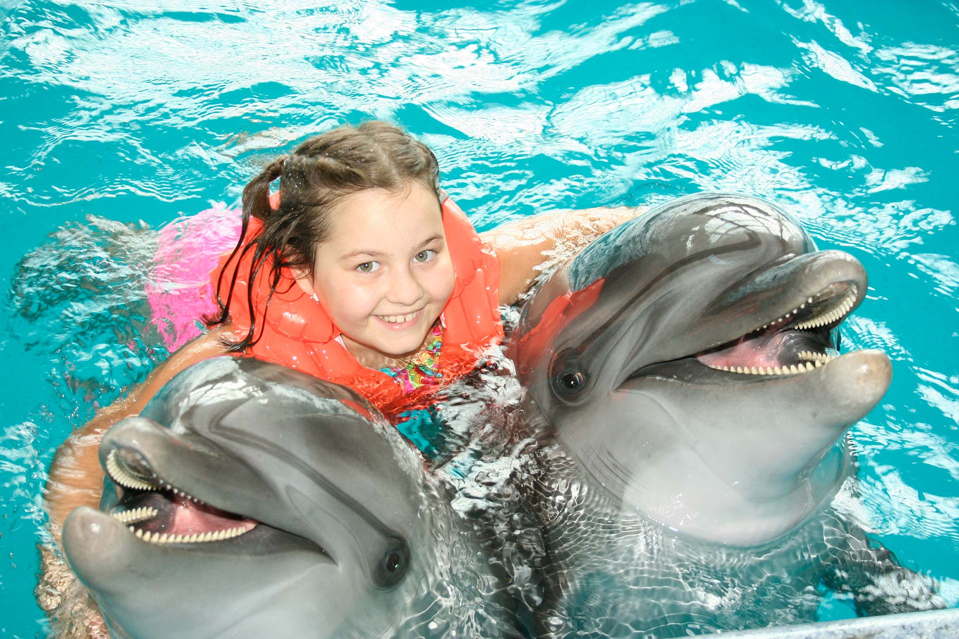 dolphin therapy, dolphin show